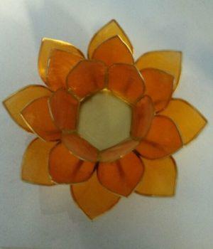 lotus-orange